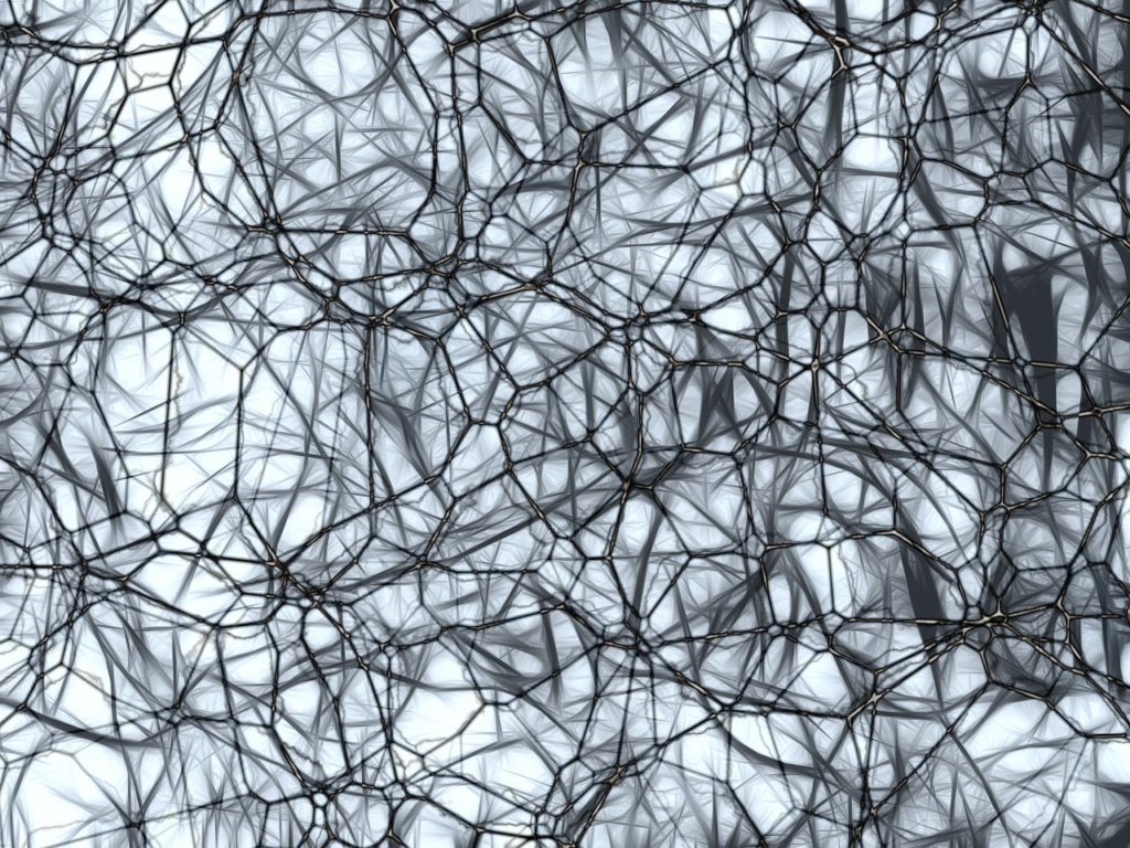 Simulation of the brain's neurons