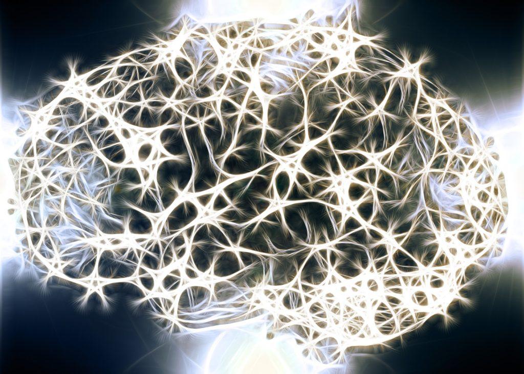 Simulation image of a brain